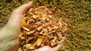 nutshells as feedstock